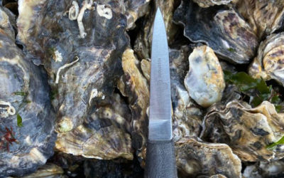 Oyster Growers Day is the 5th February 2020 in Oban.